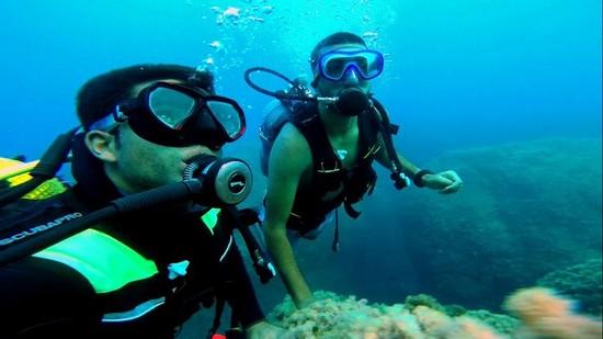 tabarka scuba diving