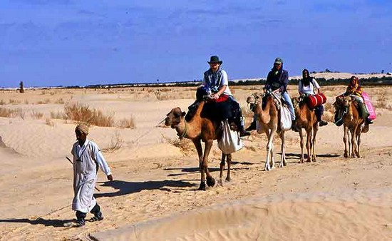 How to Prepare Physically for camel trekking in tunisia